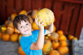 Little boy holding yellow pumpkin — Stockfoto