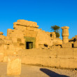 East Exterior Wall of the Karnak Temple - Egypt — Stock Photo #66009283