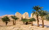 View of the mortuary Temple of Ramses III near Luxor in Egypt — Stock Photo