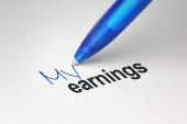 My earnings, written on white paper — Stock Photo