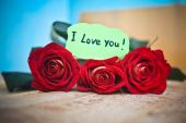 Rose bouquet and love you message  — Stock Photo