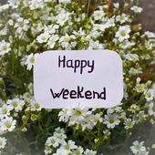 A label with Happy Weekend on it and white flowers in the backgr — Stock Photo