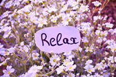 Outdoor greeting card with text - relax — Stock Photo