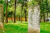 Maltese cross on headstone — Stock Photo