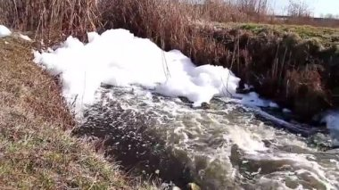 Polluted stream — Stock Video