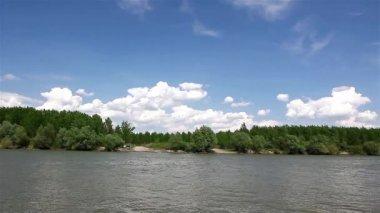 Riverbank landscape — Stock Video