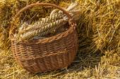 Adornment made of wheat in a handmade basket. — Stock Photo