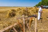 古い収穫ツール、鎌、木製レーキ. — ストック写真