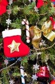Abeto de natal — Foto Stock