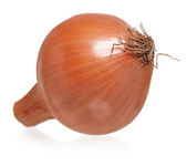Gold onion — Stock Photo
