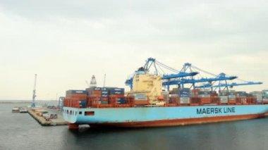 在港口的集装箱船 — 图库视频影像