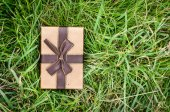 Brown gift box on green grass outdoor. — 图库照片