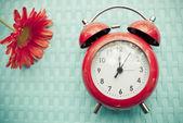 Retro alarm clock and gerbera flower on blue texture background. — Stock Photo