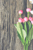 Wood background with spring flowers.  — Stock Photo