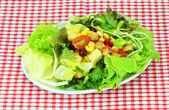 Fresh mixed vegetables salad  — Stock Photo