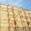 Scaffolding made of bamboo on building house  — Stock Photo #67773051