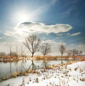 Winter river with the frozen shores — Stock Photo
