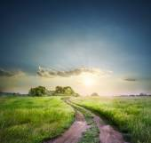 Rural road in field with green grass — Stock Photo