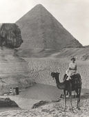 Camel ride at the  Sphinx — Stock Photo