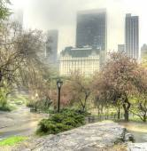 Deštivý den central park, new york city — Stock fotografie