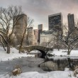 Gapstow bridge Central Park, New York City in winter — Stock Photo #53701045