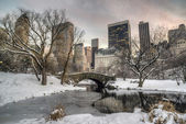 Gapstow bridge Central Park, New York City in winter — Stok fotoğraf