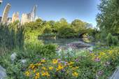 Gapstow ponte di central park, new york city — Foto Stock