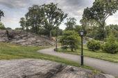 Central Park, New York City summer — Stock Photo