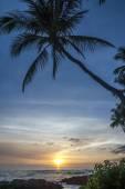 Hawai sunet — Stock Photo