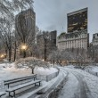 Central park, a new York — Foto Stock #65777129