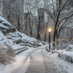 Central Park, New York City — Stock Photo #65777547