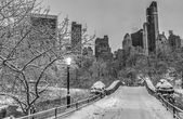 Gapstow pont de central park, new york city — Photo