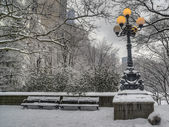 Central Park after snow storm — Stock Photo