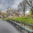 Spring Central Park, New York City — Stock Photo #72129145