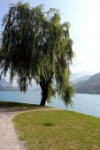 Ledro lake — Stockfoto