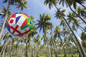 International Football Soccer Ball Flying in Brazilian Palm Grove — Stockfoto