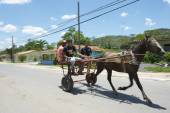 Vinales Cuba Traditional Horse and Buggy with Passengers — Stok fotoğraf
