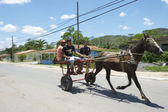 Vinales Cuba Traditional Horse and Buggy with Passengers — Stockfoto