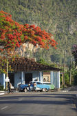 Vinales Cuba Typical Rural Scene — Stock Photo
