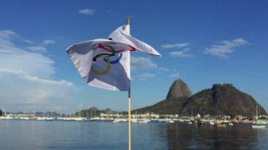 Olympic Flag Waving Rio de Janeiro — Stock Video