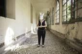 Terrifying killer rabbit — Stock Photo