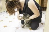 Cutting nails cat — Stock Photo