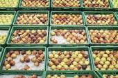 超市水果 — 图库照片