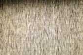 Bamboo panel — Stock Photo