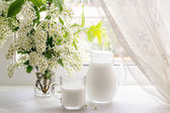 Bouquet of bird cherry and milk on the window — Stock Photo