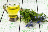 Herbal medicine: Veronica Chamaedrys in the beam and the broth — Stock Photo