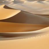 Sandy Dunes in desert — Stock Photo