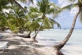 Beach on tropical island — Stock Photo