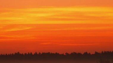 Sunrise on foggy morning — Stock Video