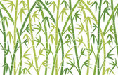 Green bamboo stems — Stock Vector